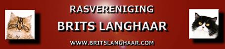 Rasvereniging Brits langhaar